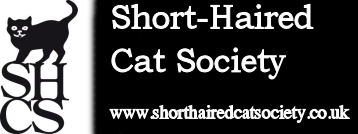 Shorthaired Cat Society